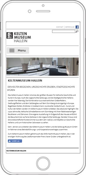 http://www.keltenmuseum.at/